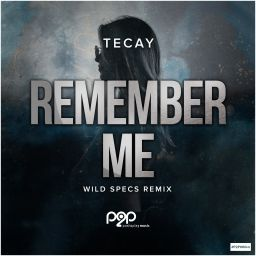 TeCay - Remember Me (Wild Specs Remix) - push2play music - 07:52 - 19.06.2020