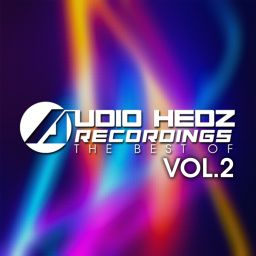 Various Artists - Audio Hedz Recordings The Best Of, Vol. 2 - AHR [Audio Hedz Recordings] - 02:05:08 - 06.03.2017
