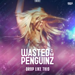 Wasted Penguinz - Drop Like This - Dirty Workz - 12:15 - 26.01.2015
